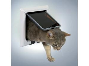 Det er vigtigt i har styr på jeres katteudstyr (foto lavprisdyrehandel.dk)