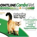 Ingen kat skal gå rundt med lopper! (foto petworld.dk)